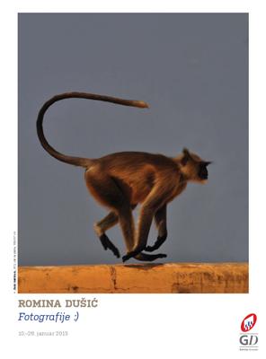 poster_romina dusic